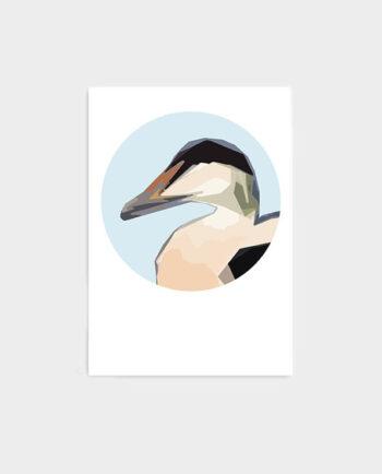 Plakat-Æðakolla-Pastelpaper